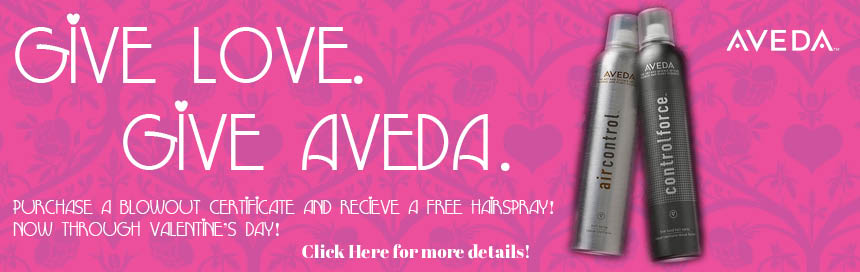 give aveda for valentine's day. buy aveda at Belle Salon & Spa aveda salon spa in sioux city for massage, blowouts, haircut, hair color, balayage & color correction